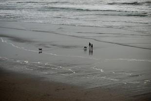 Beach-1030218